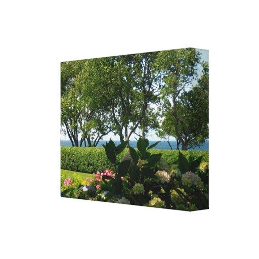 Sea Hydrangeas Rose Garden Stretched Canvas Print