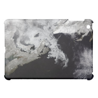 Sea ice fills the Gulf of St Lawrence Cover For The iPad Mini