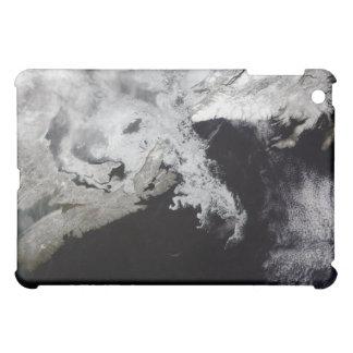 Sea ice fills the Gulf of St Lawrence iPad Mini Cover
