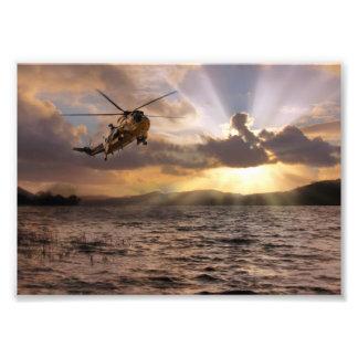 Sea King.jpg Photo Print