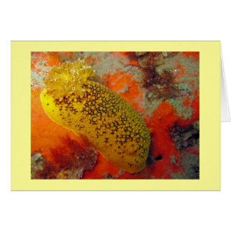 Sea Lemon Card