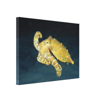 Sea Life Octopus Canvas Print
