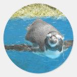 Sea Life Park Penguin Stickers