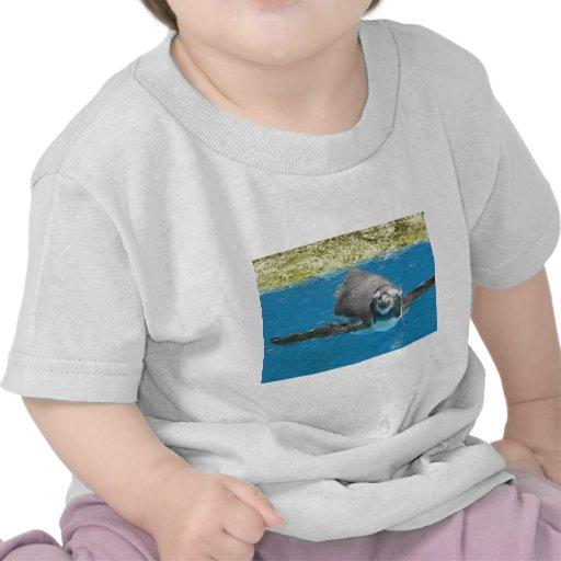 Sea Life Park Penguin T-shirt