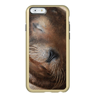 sea-lion-113.jpg incipio feather® shine iPhone 6 case