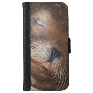 sea-lion-113.jpg iPhone 6 wallet case
