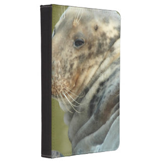 sea-lion-5.jpg kindle touch cover