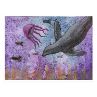 Sea lion and octopus postcard