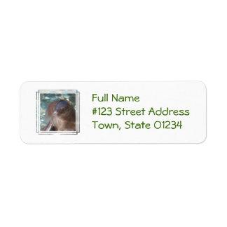 Sea Lion Baby Return Address Label