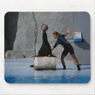 Sea lion balancing a ball in Spain Mouse Pad