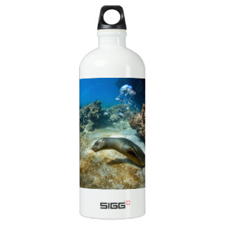 Sea lion blowing bubbles Galapagos underwater Aluminum Water Bottle