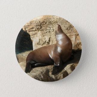 Sea Lion button