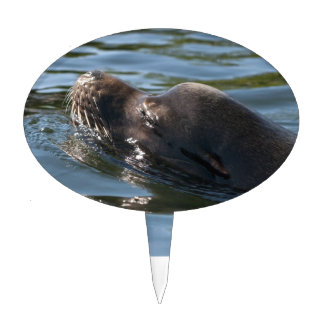 Sea Lion Cake Toppers