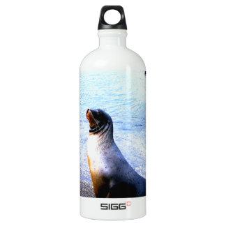 Sea lion calling for love aluminum water bottle