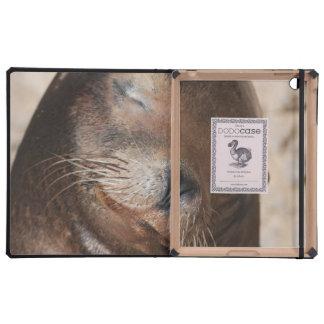 Sea Lion Covers For iPad