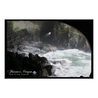 SEA LION CAVES POSTER