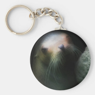 Sea lion Design Keychain