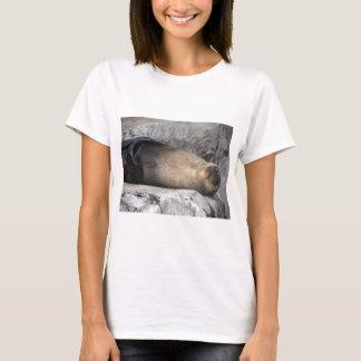 Sea Lion Dreaming T-Shirt