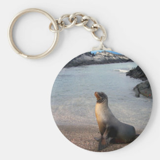 Sea Lion Galapagos Island Keychain