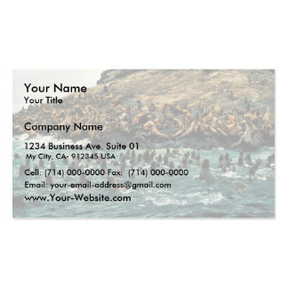 Sea Lion Group at Haulout Double-Sided Standard Business Cards (Pack Of 100)