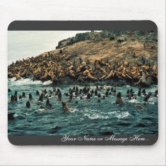Sea Lion Group at Haulout Mouse Pad