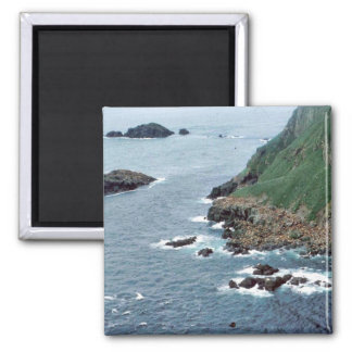 Sea Lion Haulout at Sugarloaf Island 2 Inch Square Magnet