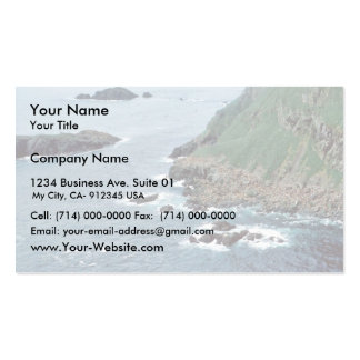 Sea Lion Haulout at Sugarloaf Island Double-Sided Standard Business Cards (Pack Of 100)