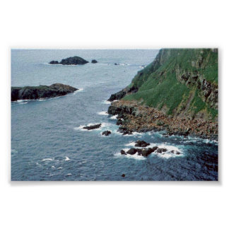 Sea Lion Haulout at Sugarloaf Island Posters
