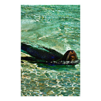 Sea Lion in Dreaming Aquatic World Stationery