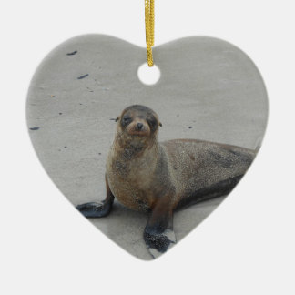 Sea Lion in the Galapagos Islands!! Christmas Tree Ornament