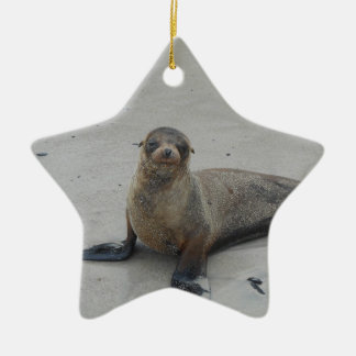 Sea Lion in the Galapagos Islands!! Christmas Ornaments