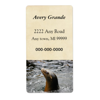 Sea Lion In The Water - Animal Photography Shipping Label
