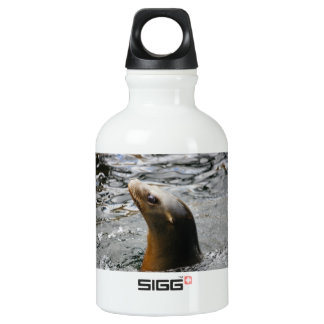 Sea Lion In The Water - Animal Photography Water Bottle