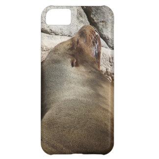 Sea Lion iPhone 5C Cover
