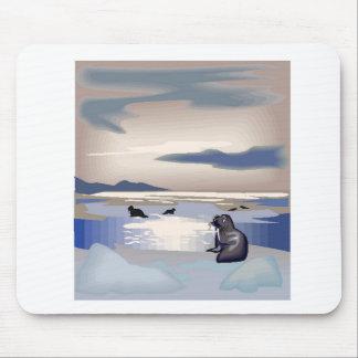 Sea Lion Island Mouse Pads