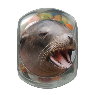 Sea Lion Jelly Belly Candy Jars
