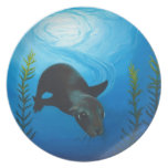 Sea Lion.jpg Plates