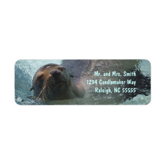 Sea Lion Label