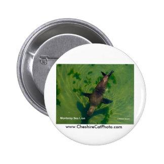 Sea Lion Monterey California Products Button