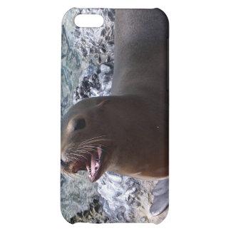 sea lion mouth open photo cute sea animal iPhone 5C covers