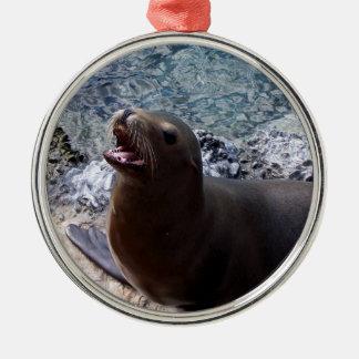 sea lion mouth open photo cute sea animal christmas tree ornaments