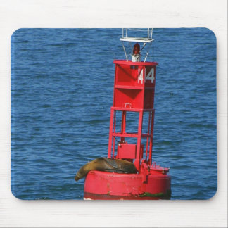 Sea Lion On Buoy Mouse Pad