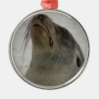 Sea Lion Christmas Tree Ornament