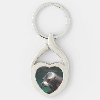 Sea Lion Key Chains