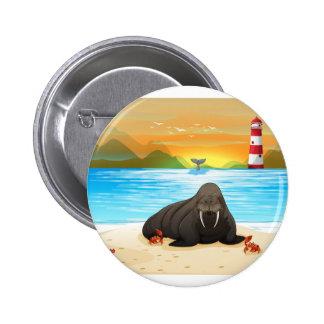Sea lion pinback button