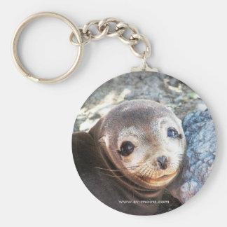 Sea lion pup, Isla Las Plazas, Galapagos Keychain