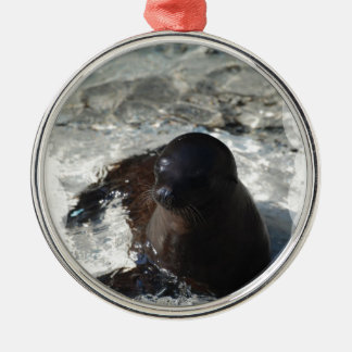 Sea Lion Pup Ornament