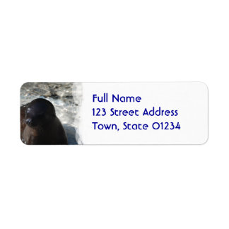 Sea Lion Pup Return Address Label