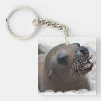 Sea Lion Snacking Single-Sided Square Acrylic Keychain