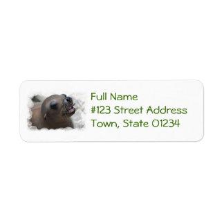 Sea Lion Snacking Return Address Label